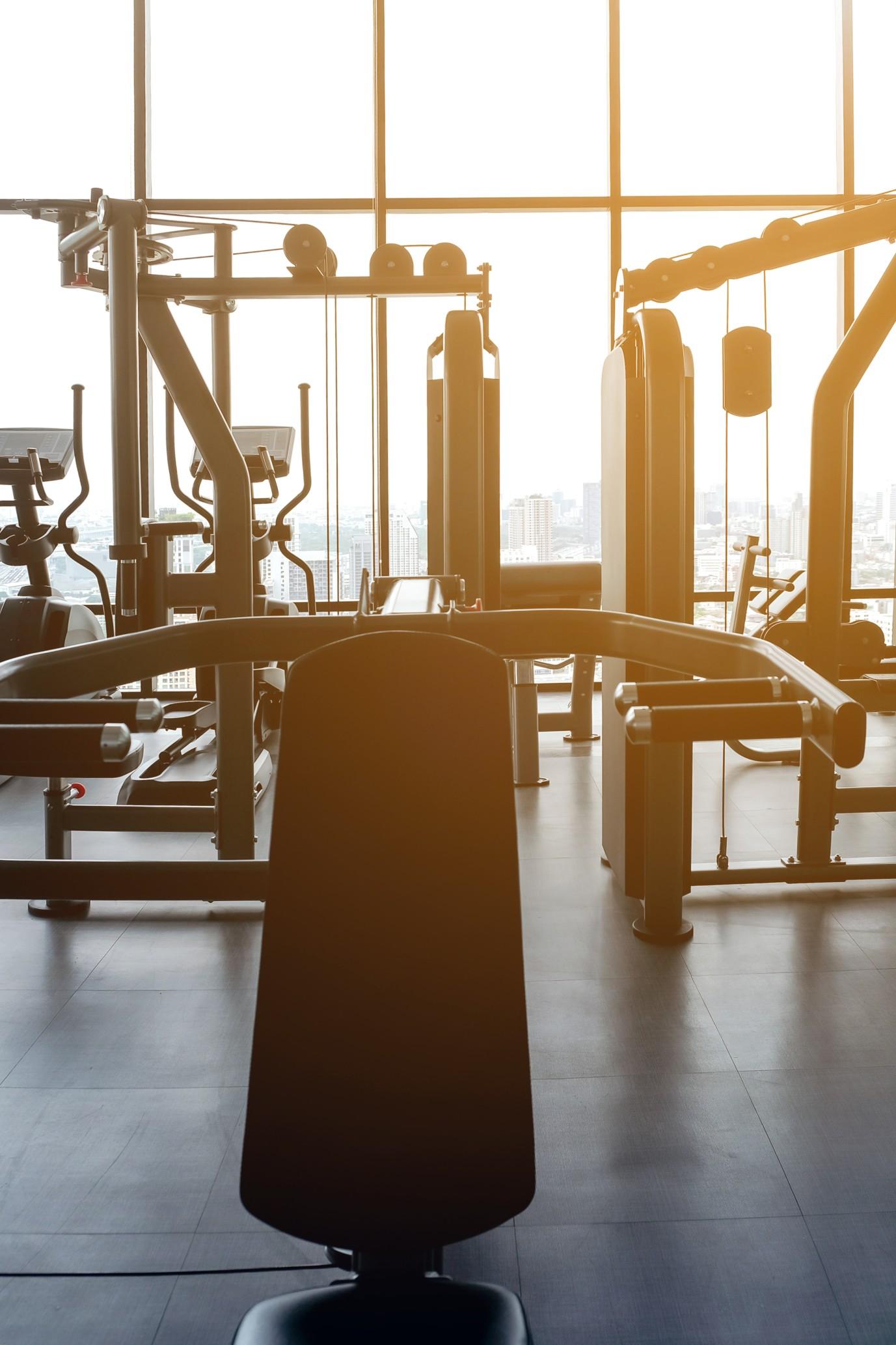 gym-musculation